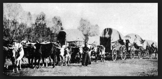 photo Donner Party