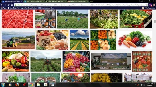 photo farm produce