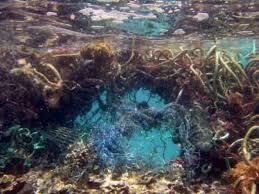 photo Ocean debris
