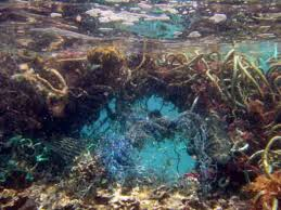 photo Ocean debris