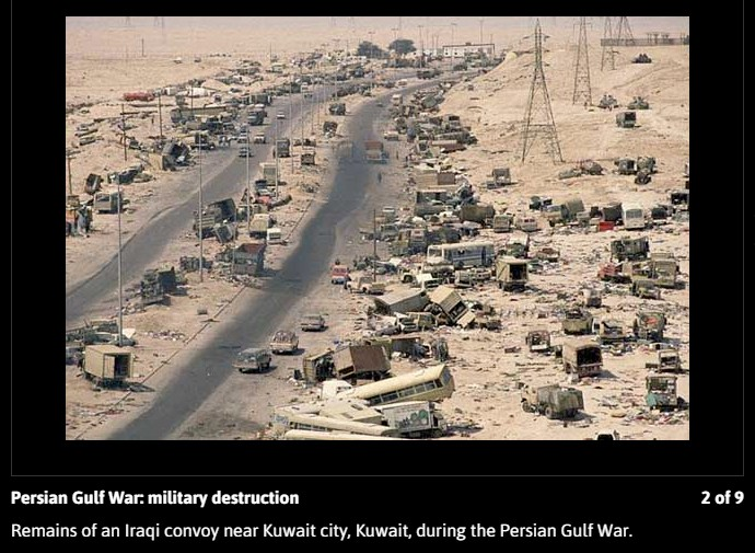 a summary of the persian gulf war